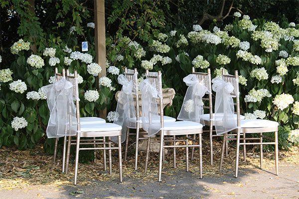 Coordinación de bodas